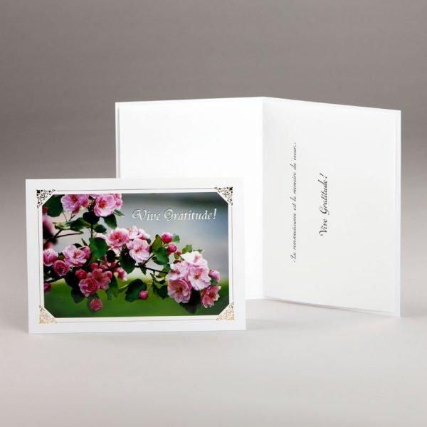 carte remerciement-fleurs de pommier