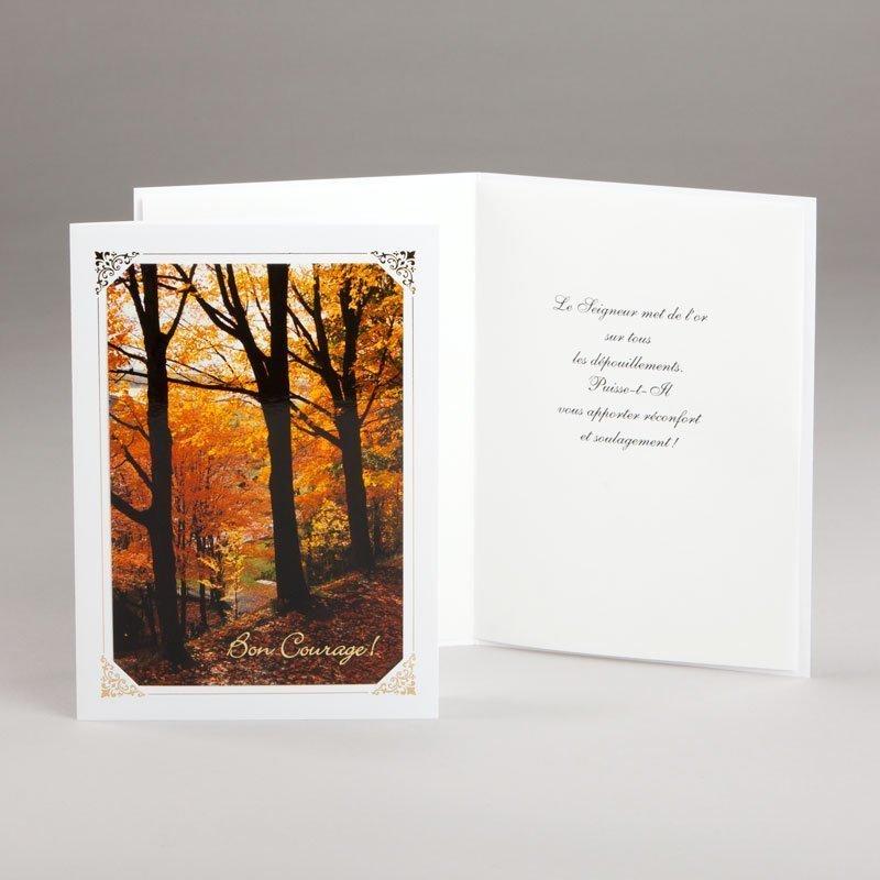carte épreuves diverses-splendeur de l'automne