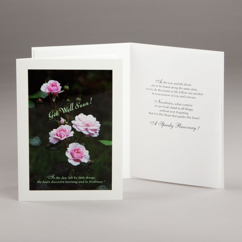 freshness of roses get-well card