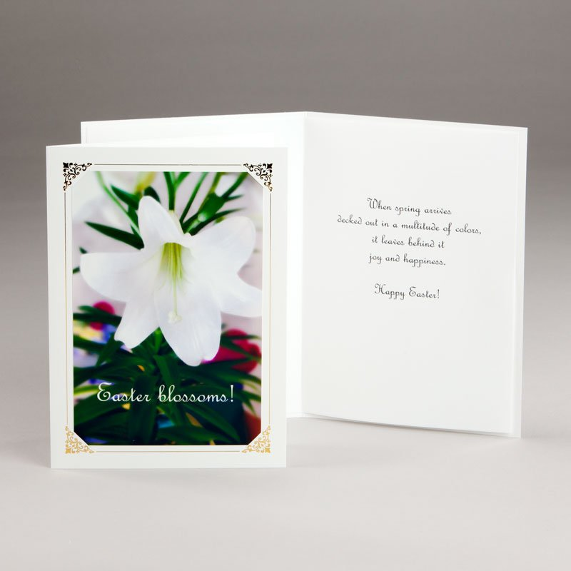 easter card-easter lily
