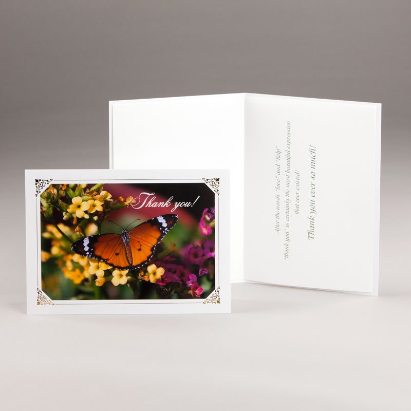 thank you card-butterfly