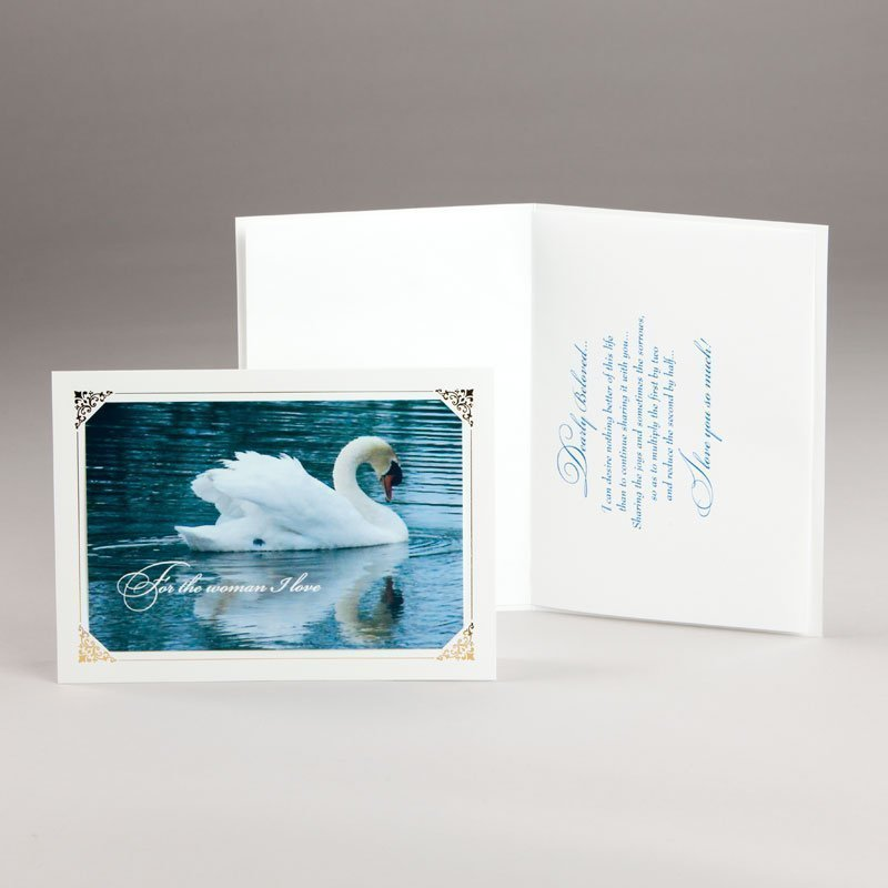 card for lovers-a majestic swan