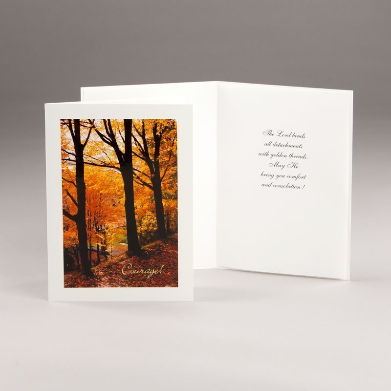 card in times of trial-fall splendors