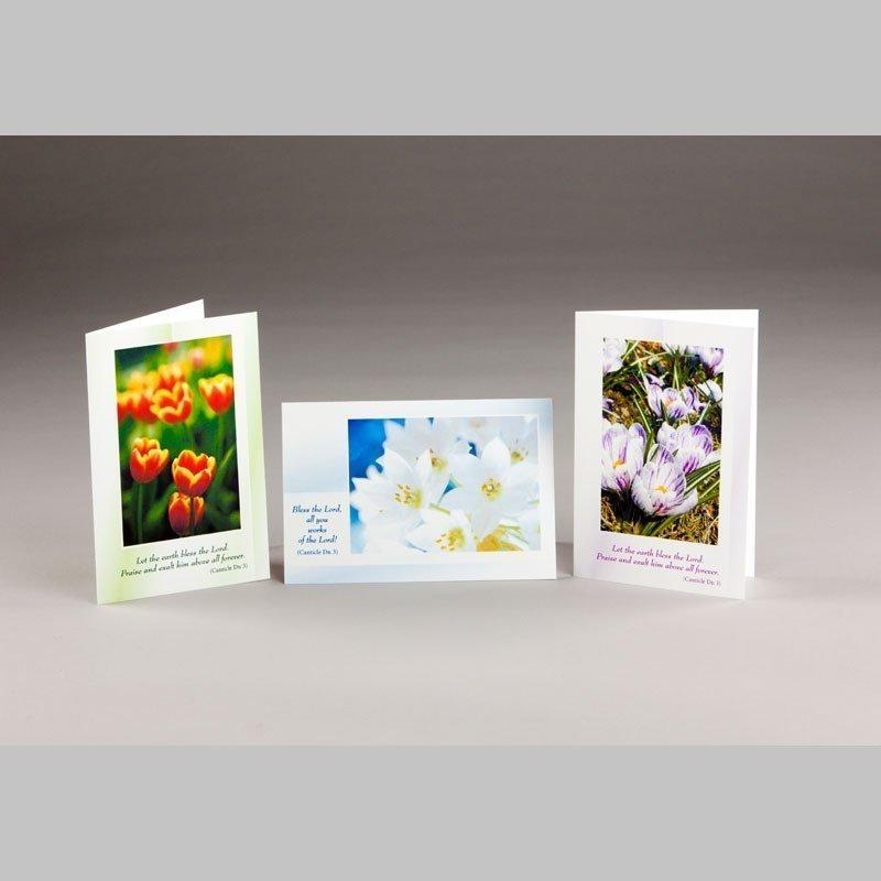 note card-spring blossom 1