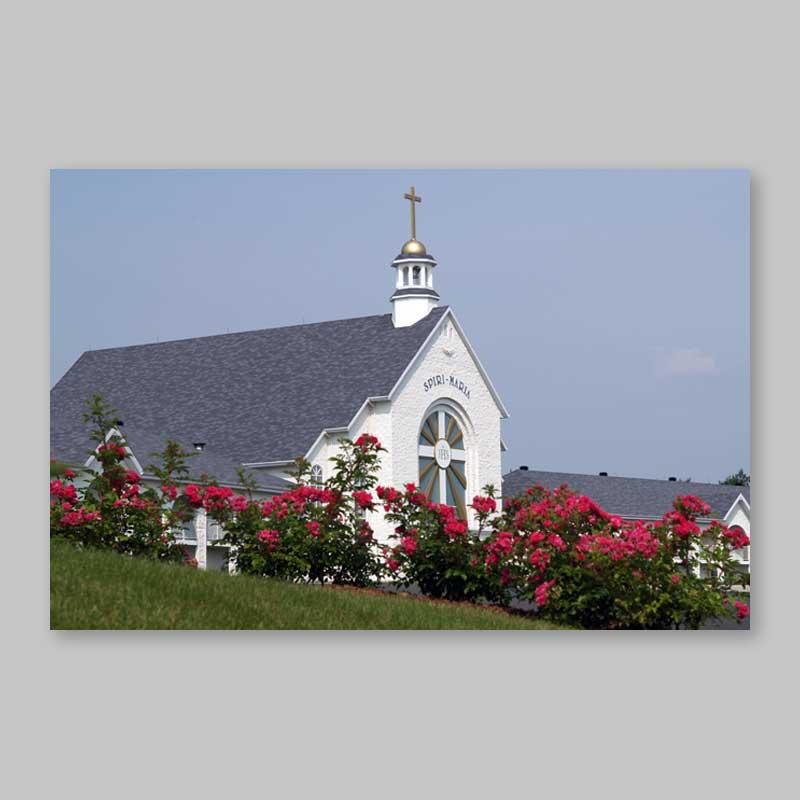 postcard - spiri-maria in blossom